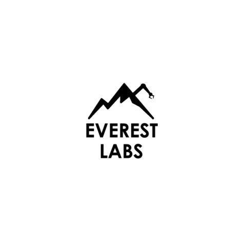 Everest Labs Logo Portfolio Tile