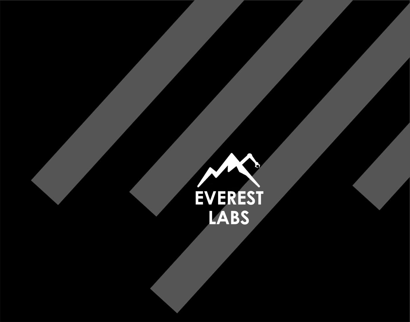 Everest Labs Logo Blog Image
